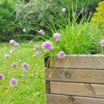Best Planter Box Reviews: Garden Planters for Your Container Gardening