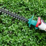Best Cordless Hedge Trimmer Reviews: Features, Benefits & Helpful Tips