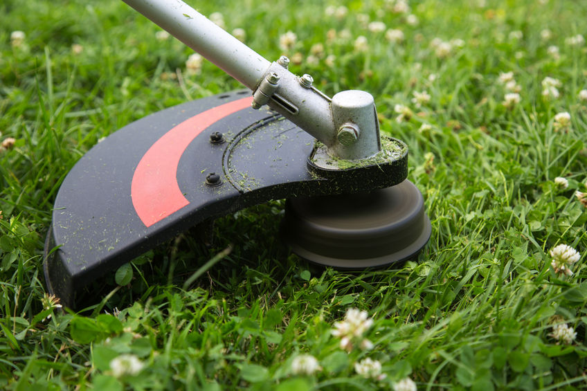 Best Cordless String Trimmer Reviews Battery Powered Weed