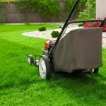 Best Walk Behind Lawn Mower Reviews (Gas, Cordless & Electric Models)