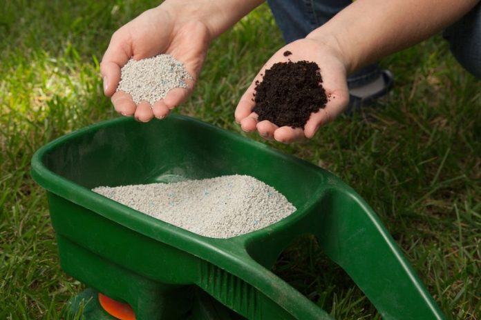 When To Fertilize New Gr Best Fertilization Schedule For